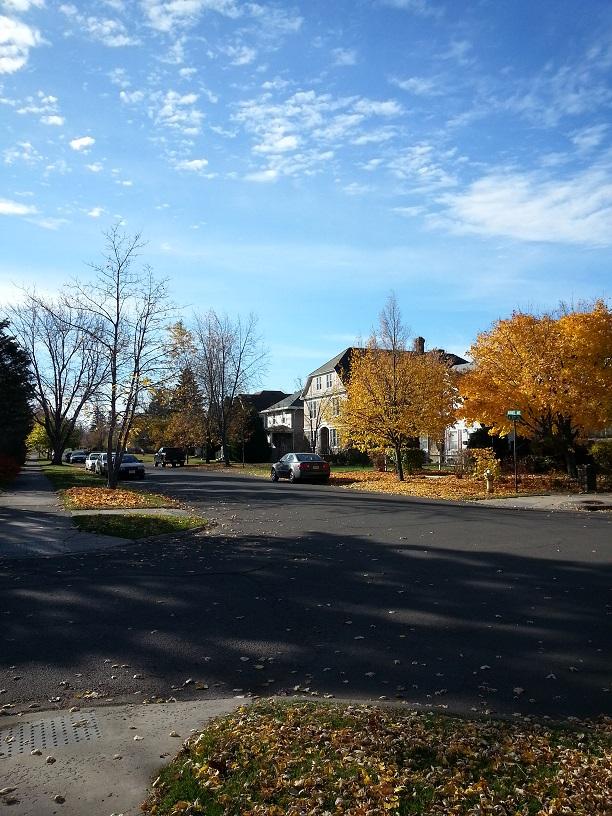 Neighborhood in late Oct