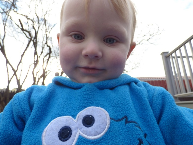 Okay, maybe not all stories. Some of them are just plain adorable, I just figured everybody was tired of seeing the Cookie Monster hoodie. I promise, he does wear other clothes!