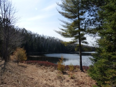 Chequamegon National Forest - April 2015 (14)