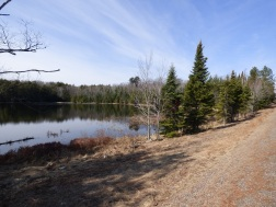 Chequamegon National Forest - April 2015 (17)