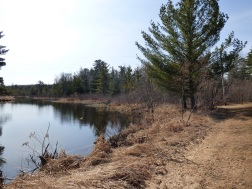 Chequamegon National Forest - April 2015 (2)