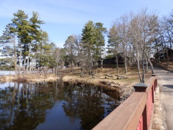 Chequamegon National Forest - April 2015 (22)