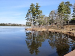 Chequamegon National Forest - April 2015 (23)