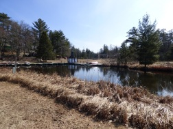 Chequamegon National Forest - April 2015 (24)
