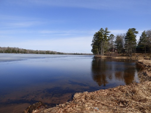 Chequamegon National Forest - April 2015 (5)