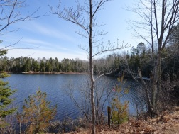 Chequamegon National Forest - April 2015 (7)